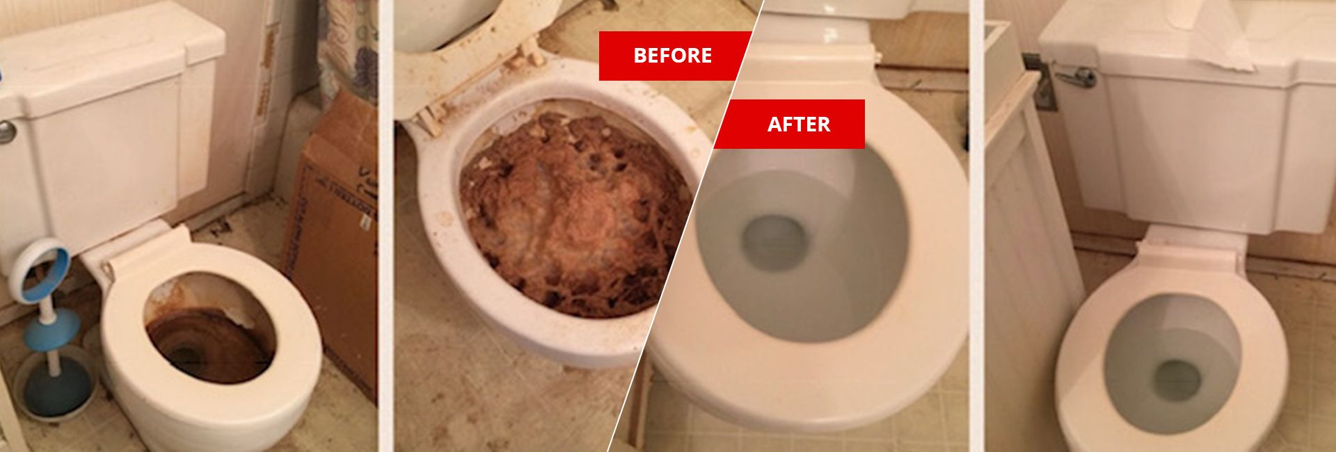 feces-urine-cleanup